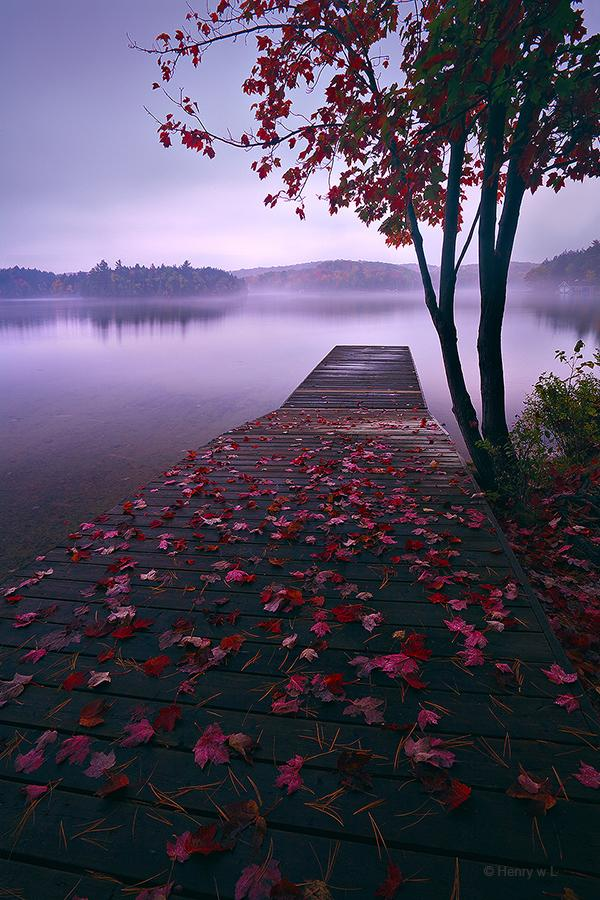 Lake-After-Rain-by-Henry-Liu