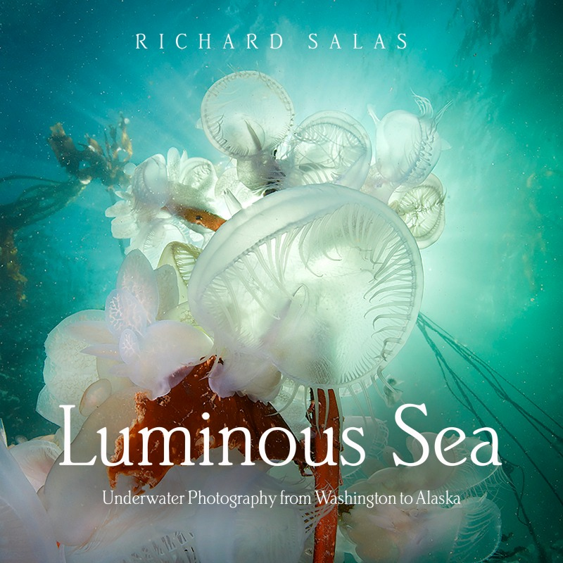 Luminous Sea - Underwater Photography from Washington to Alaska by Richard Salas
