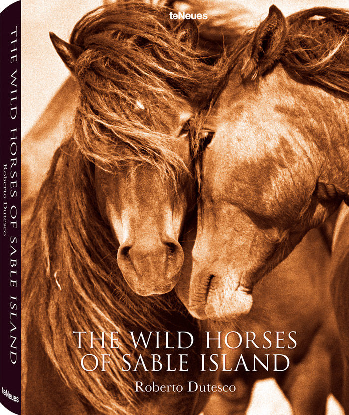 Cover for The Wild Horses of Sable Island by Roberto Dutesco on teNeus Publishing