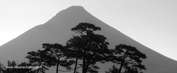 Kaimondake Volcano and Japanese Pines, Kyushu, Japan