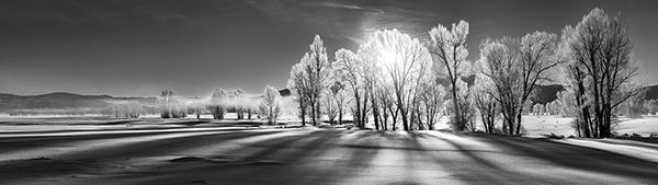 NicoDeBarmore_Morning-Shadows-in-Winter-BW_lowres