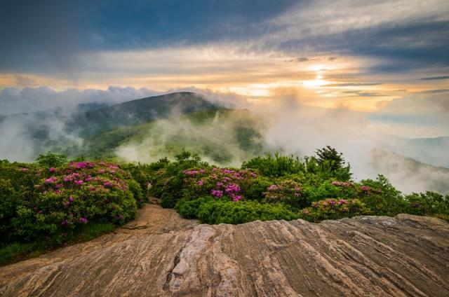 'Misty Mountain Melody, North Carolina, Appalachian Blue Ridge Mountains' by Dave Allen