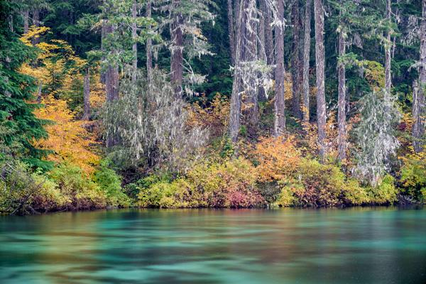 1---Fall-Foliage,-Clear-Lake,-OR_BL