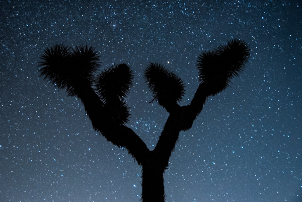 Silhouettes can create a strong graphic composition for night work. Photo by Wes Pitts.