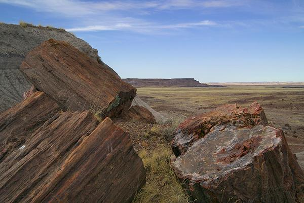 Petrified Forest National Park, Arizona. Photo courtesy of the National Park Service.