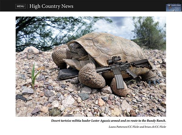 High Country News reports on the occupation of Bundy Ranch by endangered desert tortoises. Photo credit: Laura Patterson/CC Flickr and brian.ch/CC Flickr.
