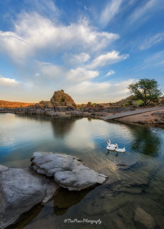 "Today's Photo Of The Day is ""Synchronicity"" by Theresa Ditson. Location: Near Prescott, Arizona."