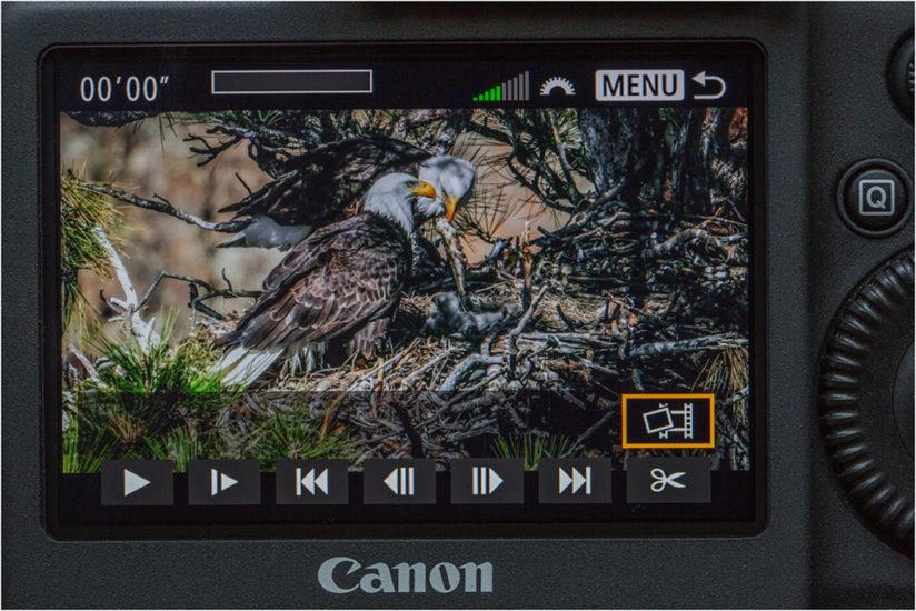 One of the extremely useful features of the EOS-1D X Mark II's 4K video capture is the ability to choose a single frame from the video stream as it is displayed on the rear LCD, select it, and store it on the media card as a JPEG file.