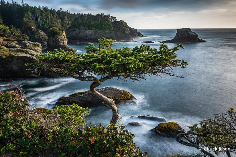 Congratulations to Chuck Jason for winning the Beaches And Coastlines Assignment!