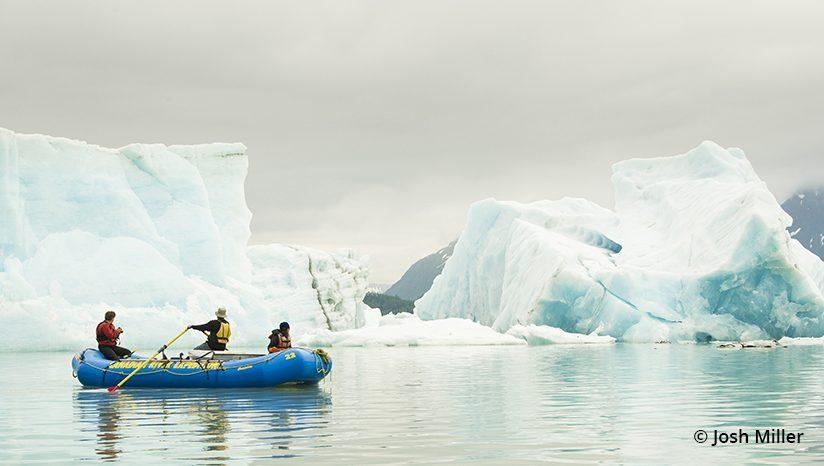 Navigating icebergs in Alsek Lake