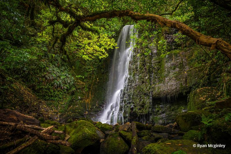 """Today's Photo Of The Day is """"Matai Falls"""" Ryan Mcginley. Location: Catlins Forest Park, South Island of New Zealand."""
