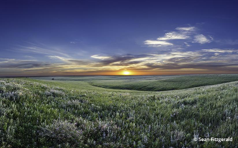 Tallgrass Prairie National Preserve, Flint Hills, Kansas, USA.