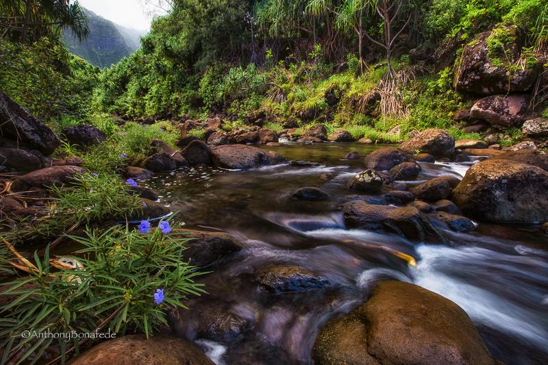 "Today's Photo Of The Day is ""River Crossing"" by Anthony Michael Bonafede. Location: Kalalau Trail, Kauai, Hawaii."
