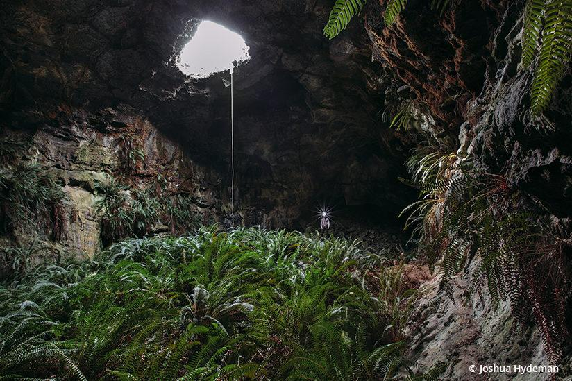 Behind The Shot: Subterranean Terrarium
