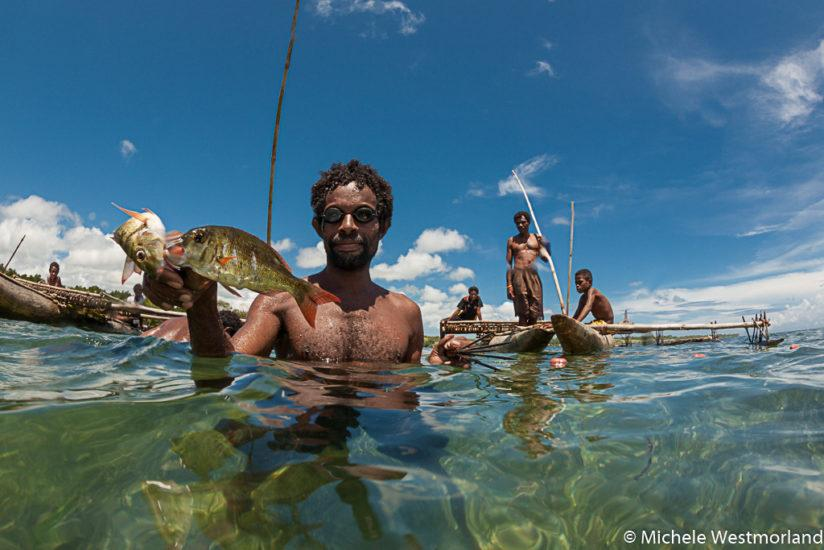 "Traditional method of fishing in the shallow waters.  After being trapped in an area surrounded by nets, the men snorkel to spear the fish.  ""Sweetlips"" are a favorite of the village communities of the Tufi area, Oro Province, Papua New Guinea"