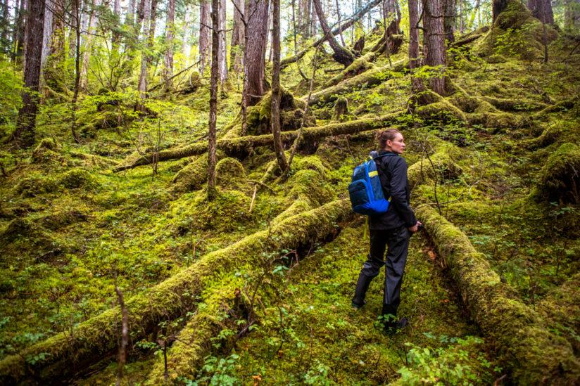 A woman hikes through the forests of south eastern Alaska.
