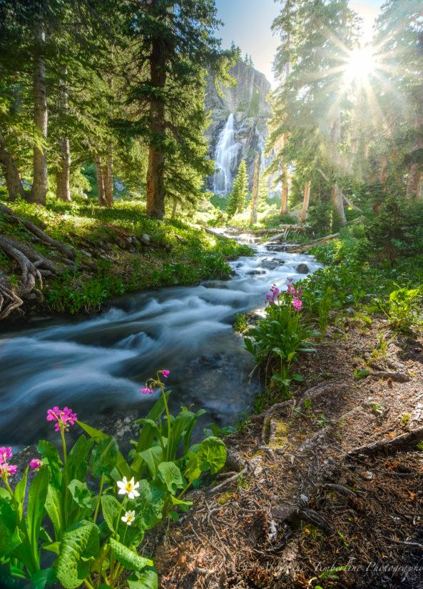 Today's Photo Of The Day is Fairy Tale Stream is Jennifer Renwick. Location: Ice Lakes, Colorado.