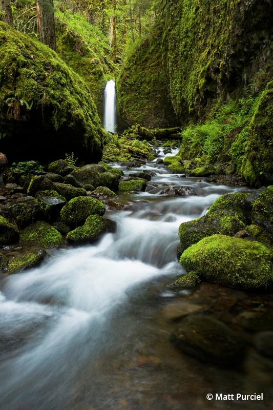 Today's Photo Of The Day is Return to Eden by Matt Purciel. Location: Oregon.