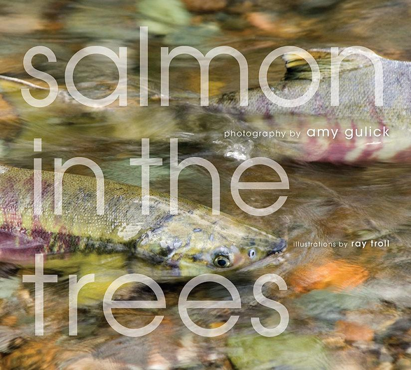 Salmon in the Trees: Life in Alaska's Tongass Rain Forest by Amy Gulick is the recipient of an Independent Publisher Book Award, as well as two Nautilus Book Awards that recognize books that promote conscious living and positive social change.