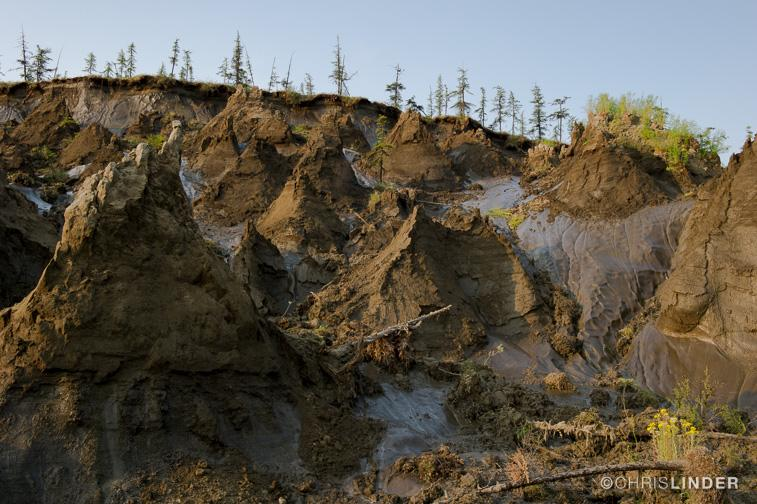WILDSpeak 2016: Chris Linder will discuss permafrost thaw.