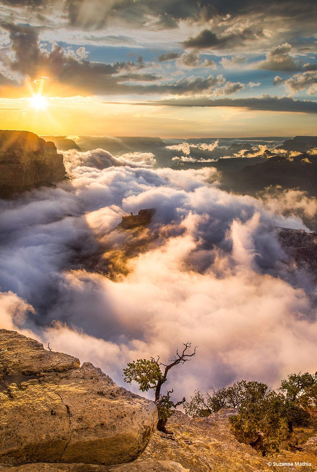 "Today's Photo Of The Day is ""Rising Fog"" by Suzanne Mathia. Location: Grand Canyon National Park, Arizona."