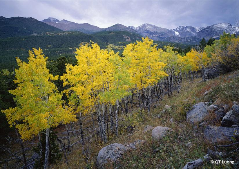 National Parks Fall Foliage Rocky Mountain