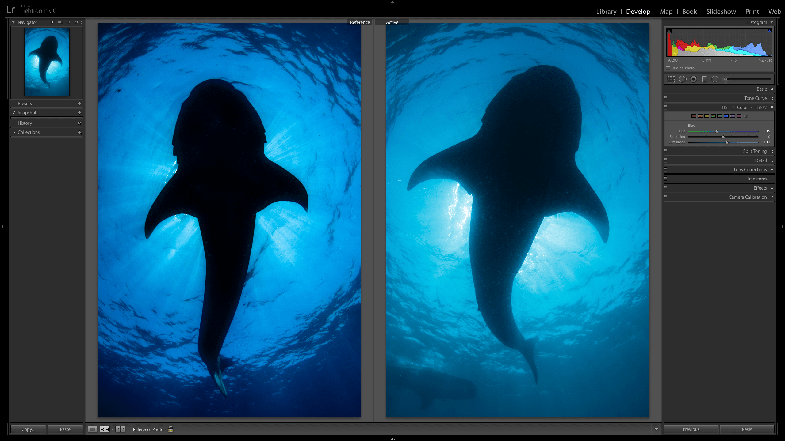 Lightroom CC's new Reference View