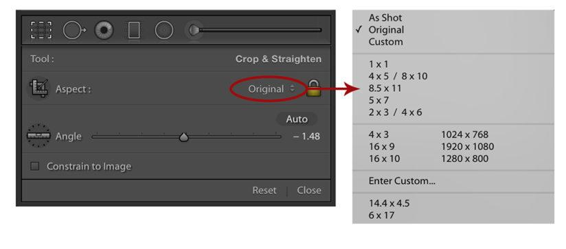RAW Workflow Crop Ratios