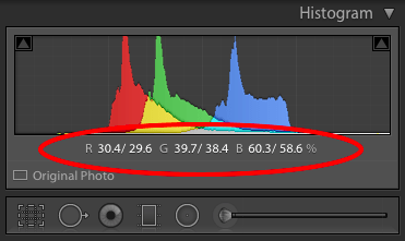 Figure 5: While in Reference View, the Histogram Panel can show you a side-by-side comparison of RGB values