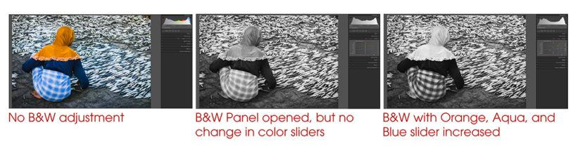 RAW Workflow Black and White Panel