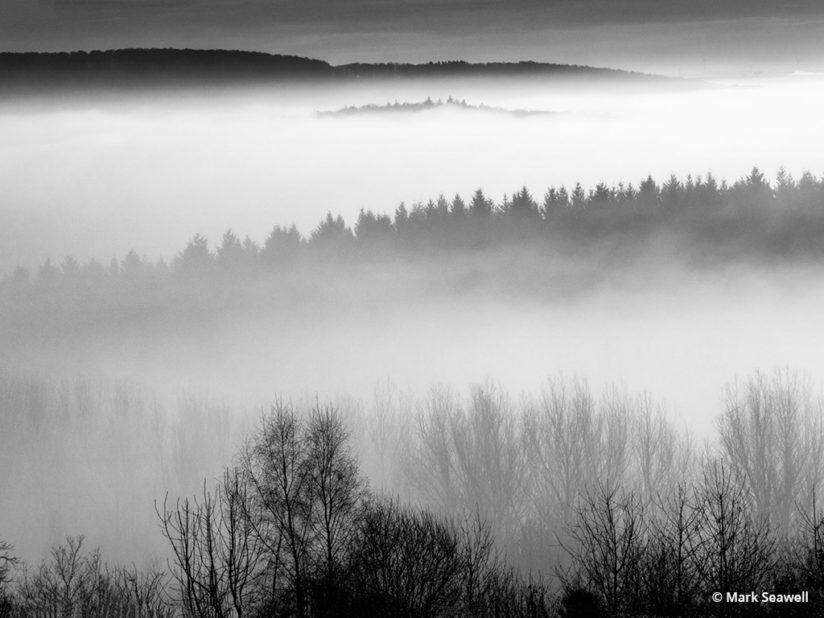 Today's Photo Of The Day is Morning Mist by Mark Seawell. Location: Haschbach, Germany.