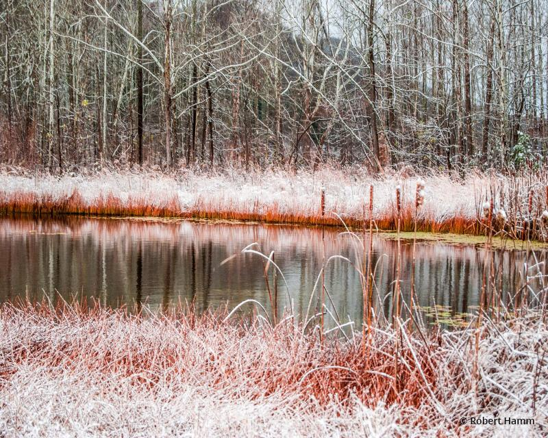 "Today's Photo Of The Day is ""Snow On The Flats"" by Robert Hamm. Location: Daniel Boone National Forest, Kentucky."