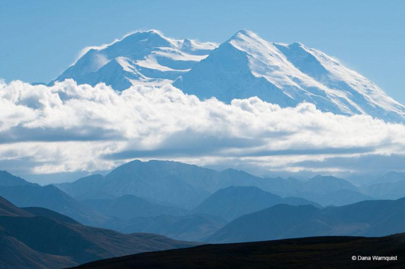 "Today's Photo Of The Day is ""North Face of Denali"" by Dana Warnquist. Location: Denali National Park and Preserve."