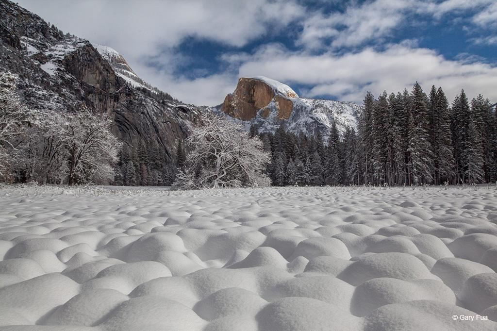 "Today's Photo Of The Day is ""Illustrious"" by Gary Fua. Location: Yosemite National Park, California."