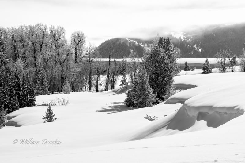 Winter Landscape In Black-And-White Photo Assignment