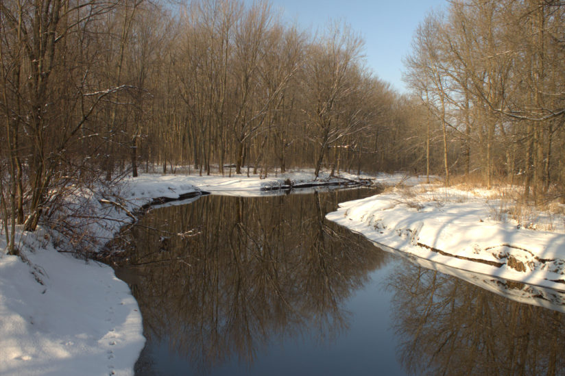 Little Eau Plaine at McMillan Wildlife late winter