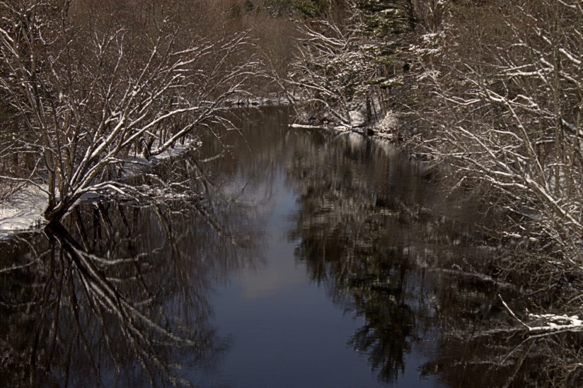 Pigeon River late winter