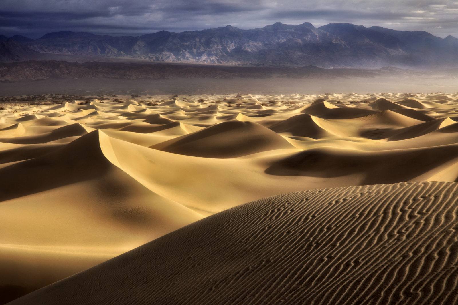 First light and ripple patterned sand dunes. Death Valley National Park, CA