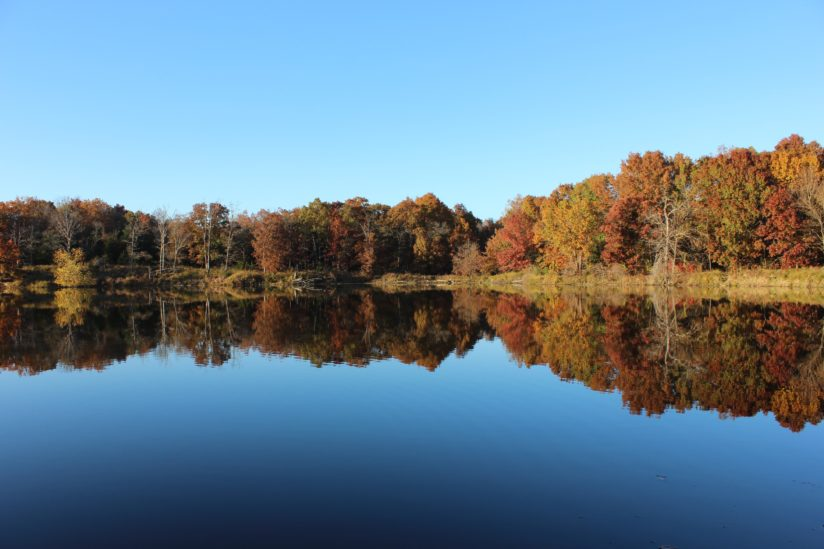 Fall at Knob Noster State Park