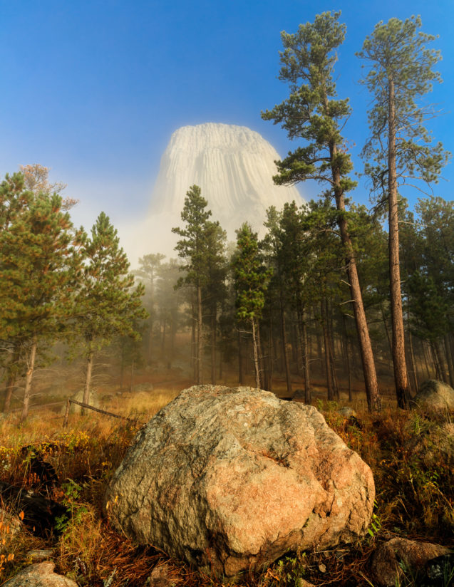 Devil's Tower in Morning Fog